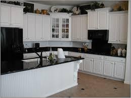 Paint Kitchen Cabinets Black by Painting Kitchen Appliances Detrit Us Kitchen Cabinets