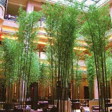 artificial tree artificial silk plastic bamboo palm tree manufacturers and
