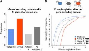 a compendium of caenorhabditis elegans rna binding proteins