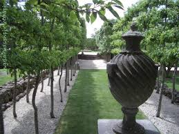 167 best paul bangay images on formal gardens gardens