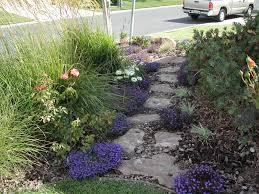 lori palmquist water efficient garden