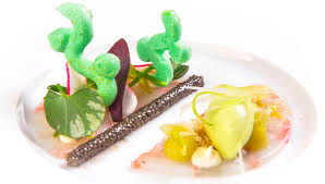 cuisine haute la nouvelle veg vegetarian haute cuisine pordamsa