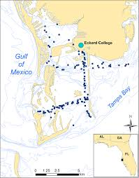 Colleges In Florida Map by Eckerd College Dolphin Project Eckerd College