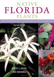 sound native plants native florida plants low maintenance landscaping and gardening