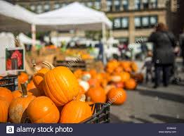 pumpkins for sale some days before halloween celebration in a