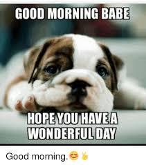 Memes Good Morning - good morning babe hopeyou havea wonderful day good morning