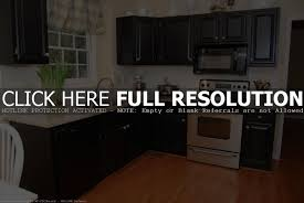 small kitchens with black cabinets modern cabinets