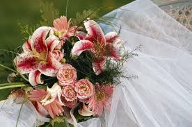 wedding planning classes schools that offer classes for wedding planning online education