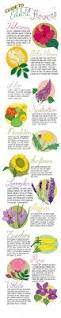 25 best hibiscus tea ideas on pinterest coffee health benefits