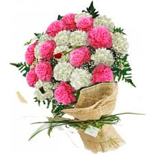carnation bouquet carnation monthsary bouquet delivery loyola heights quezon city