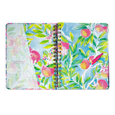 Lily Pulitzer Swell Bottle by 2017 2018 Lilly Pulitzer Medium Agenda Off The Grid U2013 The Lucky Knot