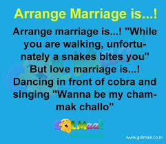 Wedding Quotes Jokes Best 25 Arranged Marriage Quotes Ideas On Pinterest Female Led