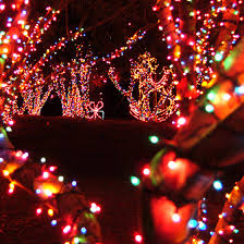 Lake Lanier Nights Of Lights Atlanta Amusement Parks Lanier Islands Lanierworld Atlanta