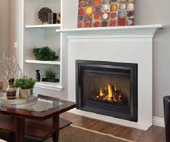 Fireplace Inserts Seattle by Regency Brand Fireplaces Stoves Inserts Aqua Quip