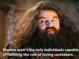 Harry Potter Meme - introducing the feminist harry potter meme