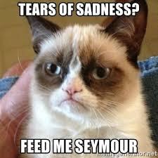 Feed Me Seymour Meme - feed me meme info