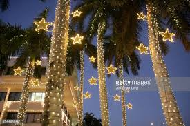 lights on palm trees stock photos and pictures getty