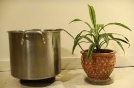 self watering plants wick watering for container plants thriftyfun