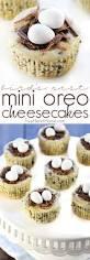 bird u0027s nest mini oreo cheesecakes easy easter dessert