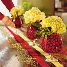 cranberries are so pretty to decorate with i used