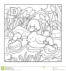coloring book duck colorless illustration letter stock