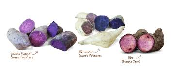 different types of purple the ultimate purple sweet potato guide frieda s inc the