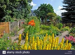 romantic cottage gardens exploring cottage gardens hgtvmany of the