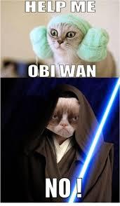 Star Wars Cat Meme - grumpy cat internet meme invades star wars be