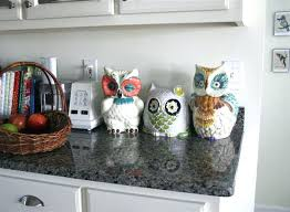 owl kitchen canisters owl canisters for the kitchen or best owl kitchen images on owl