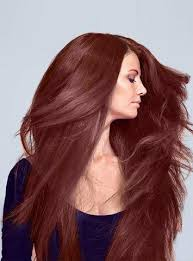 large hair free hair extensions ombre and halo hair extensions free