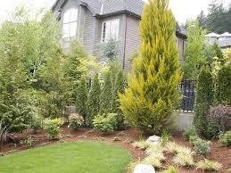 How To Make Backyard More Private Lake Oswego Residence Innovative Landscaping Inc