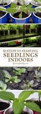 7544 best garden ideas k images on pinterest gardening veggie