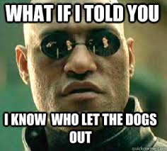 Who Let The Dogs Out Meme - what if i told you i know who let the dogs out matrix morpheus