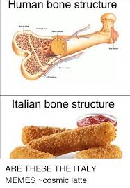 Italian Memes - 25 best memes about italy meme italy memes