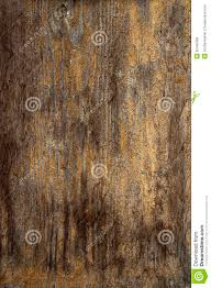 Beautiful Wood Old Wooden Wall Texture Structure Royalty Free Stock Images