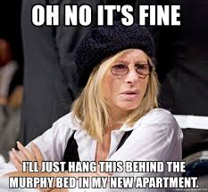 Barbra Streisand Meme - oh no it s fine i ll just hang this behind the murphy bed in my