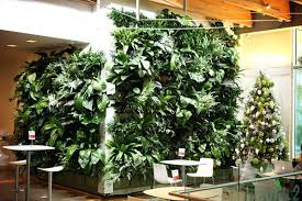 wall garden indoor wall ideas living herb wall living wall garden project vancouver