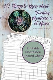 printable montessori curriculum teaching montessori at home montessori curriculum free download