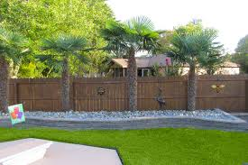 Backyard Beach Design Virginia Beach Palm Tree Design HOUSE - Backyard beach design