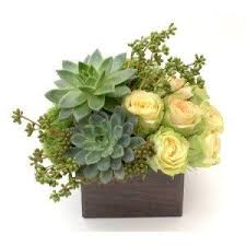 flowers for men flowers for men nyc flower delivery by gabriela wakeham best