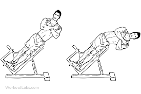 Hyperextension Benches Roman Chair Hyperextension Bench Side Bends Workoutlabs