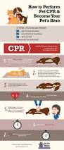 115 best cpr images on pinterest first aid cpr training and