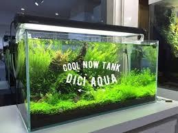 Aquascaping Tools Dici Aquascaping Aquariums And Tools By Mariana For Aquariums