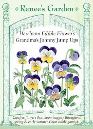 edible flowers s johnny jump ups heirloom edible flowers renee s
