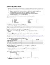 Photosynthesis And Cellular Respiration Worksheet Cellular Respiration Essay Summary Essays Dear Wayne