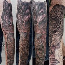wolf on arm photo 2 2017 photo pictures