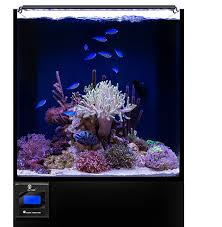 current usa orbit marine aquarium led light orbit marine saltwater tank led lights for aquariums i current usa