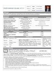 Senior Accountant Resume Sample by Bank Auditor Cover Letter Social Researcher Sample Resume Chief