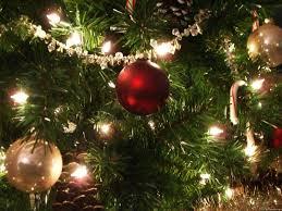 christmas tree and lights christmas lights decoration