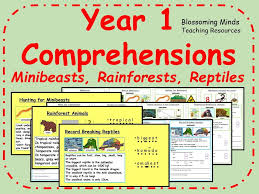 year 1 comprehension rainforests by blossomingminds teaching